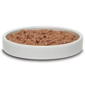 Wet arthrtis cat food in bowl